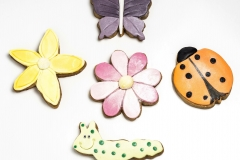 Flowers and insect cookies Contemporary Cakes and Classes