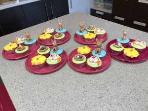 Brisbane Kids cake decorating Classes Contemporary Cakes and Classes