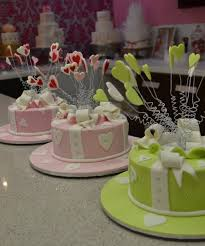 Cake decorating class Brisbane shooting stars class Contemporary cakes and Classes