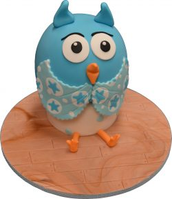 owl cake cake classes brisbane Contemporary Cakes and Classes