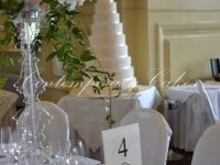 Wedding cake at Customs House at Brisbane
