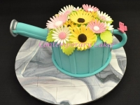 Birthday Cake Watering can