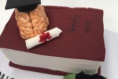 graduation cake  Brisbane Contemporary Cakes and Classes