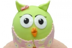 owl 1 birthday cake Brisbane Contemporary Cakes and Classes
