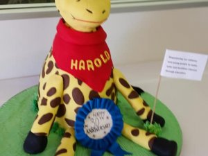 Happy Harold Giraffe cake Contemporary Cakes and Classes