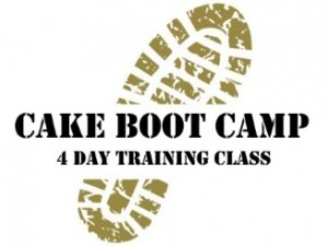 4 Day Boot Cake Camp Brisbane Cake Decorating Class