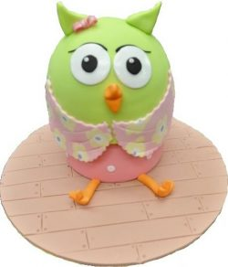 owl cake cake classes brisbane Contemporary Cakes and Classes
